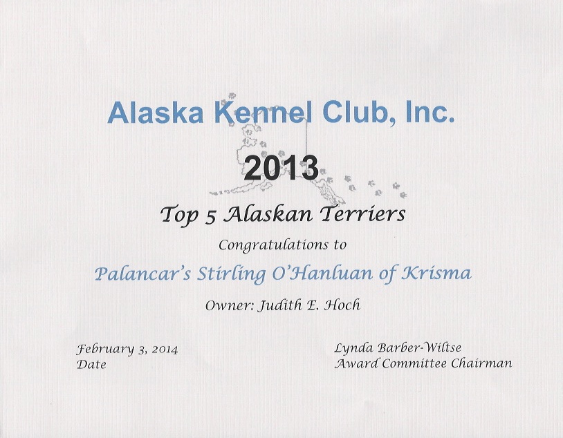 Top 5 Alaskan Terriers