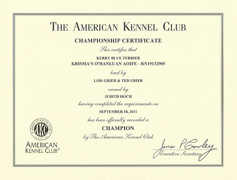 Aoife's AKC Championship Certificate