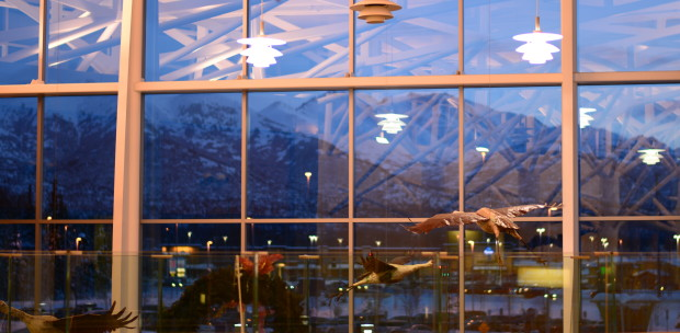 View from atop the foyer at the VA out-patient clinic in Anchorage, Alaska