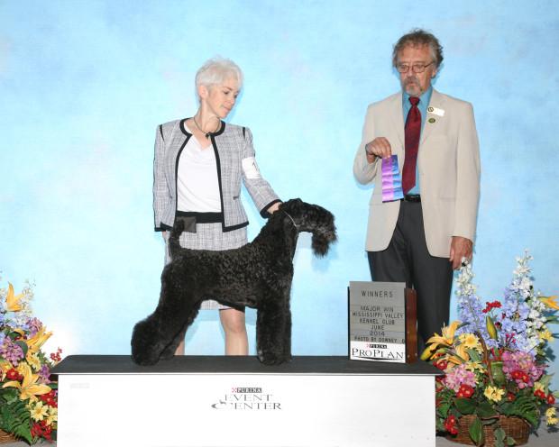 Judge Dr. Stephen J Schellenberg awarded Stirling O'Hanluan WD for his 2nd 5-Point Major.