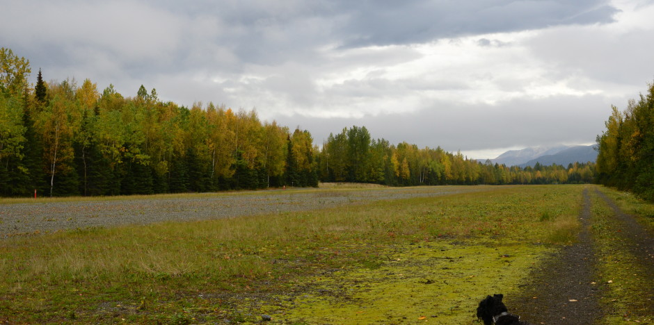 Campbell Airstrip in Autumn